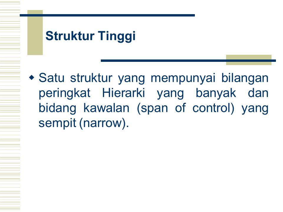 Struktur Tinggi Satu struktur yang mempunyai bilangan peringkat Hierarki yang banyak dan bidang kawalan (span of control) yang sempit (narrow).