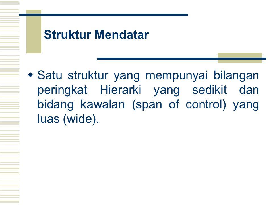 Struktur Mendatar Satu struktur yang mempunyai bilangan peringkat Hierarki yang sedikit dan bidang kawalan (span of control) yang luas (wide).