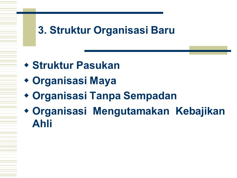 3. Struktur Organisasi Baru