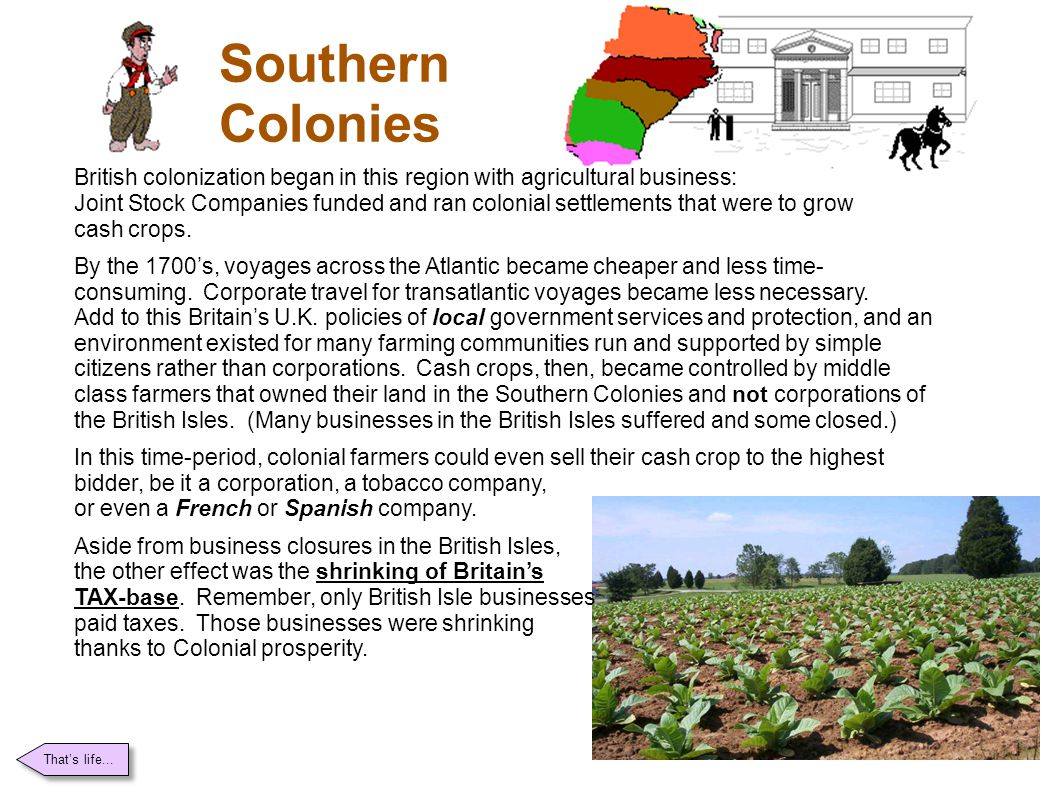 Southern Colonies British colonization began in this region with agricultural business: