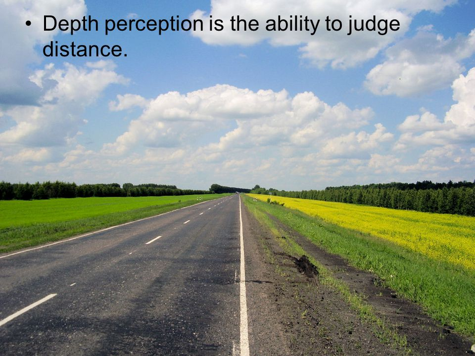 Depth perception is the ability to judge distance.