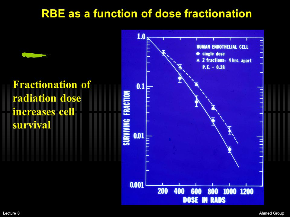 RBE as a function of dose fractionation