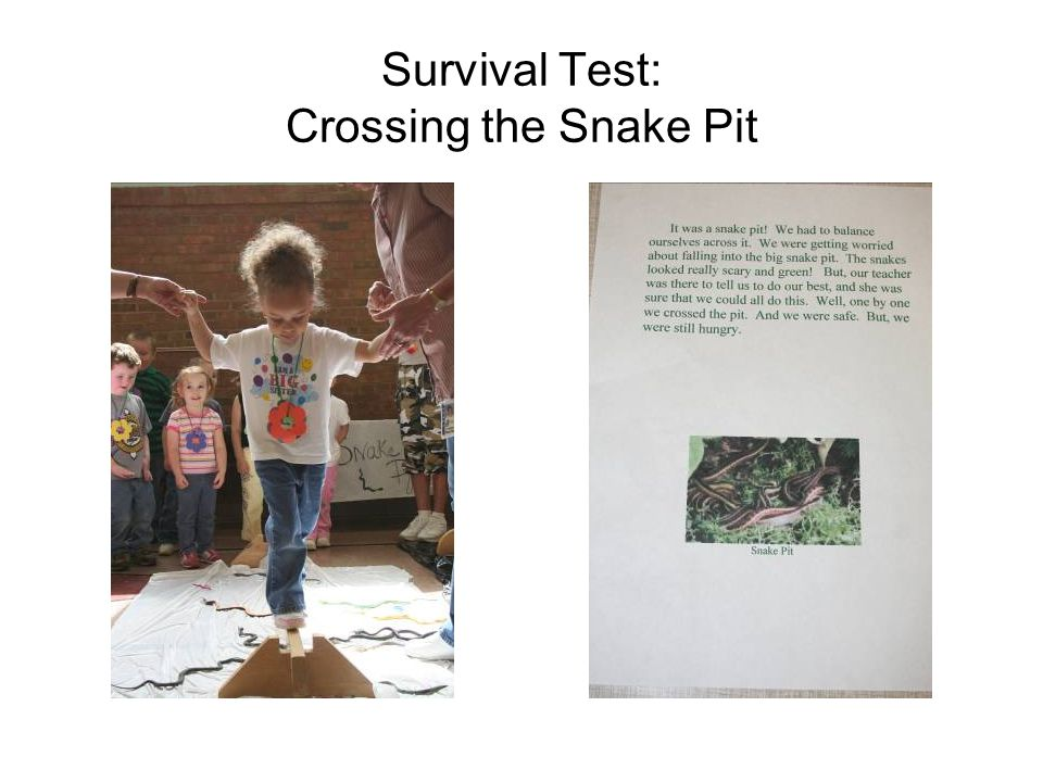 Survival Test: Crossing the Snake Pit