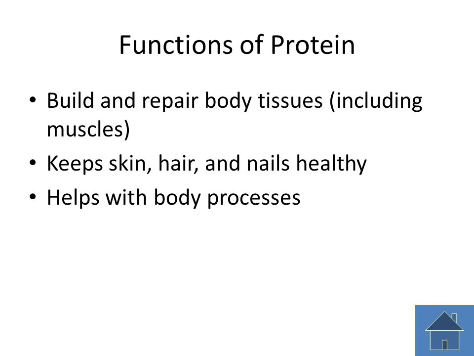 Functions of Protein Build and repair body tissues (including muscles)