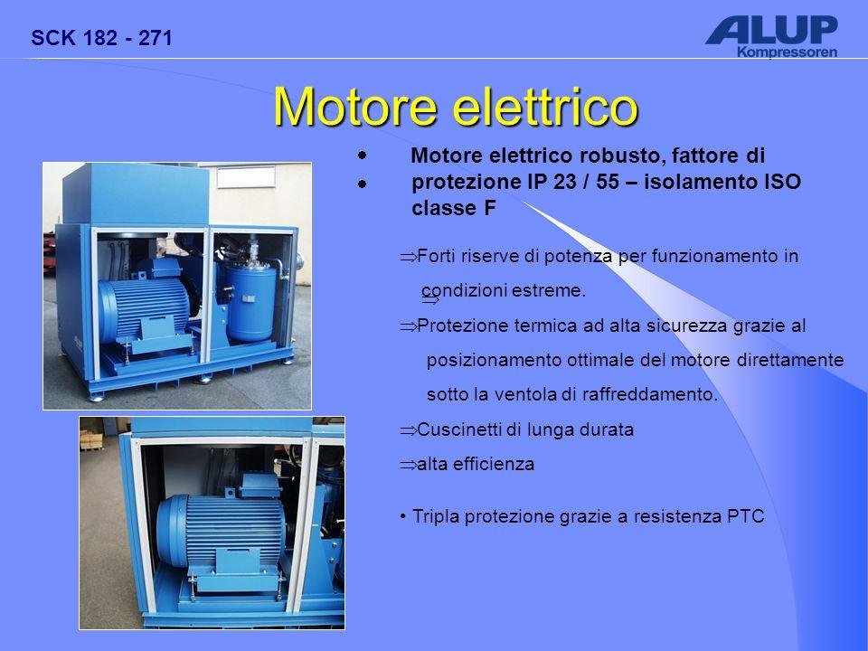Motore elettrico · Motore elettrico robusto, fattore di protezione IP 23 / 55 – isolamento ISO classe F.