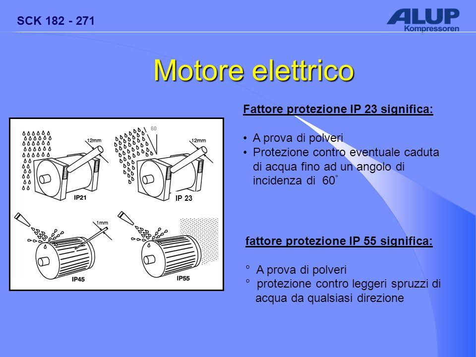 Motore elettrico Fattore protezione IP 23 significa: