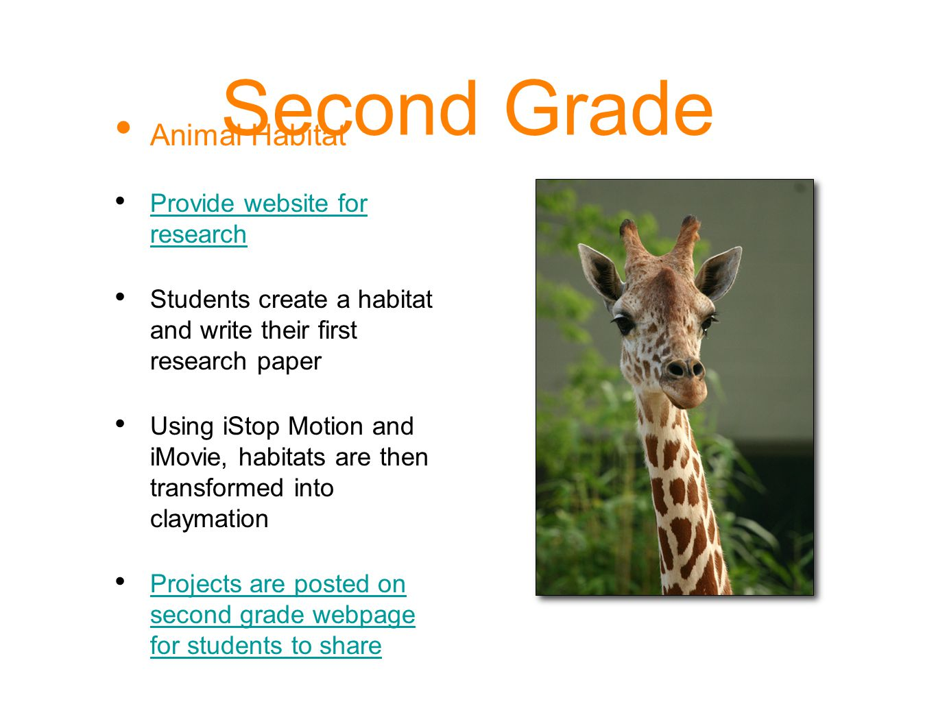 Second Grade Animal Habitat Provide website for research