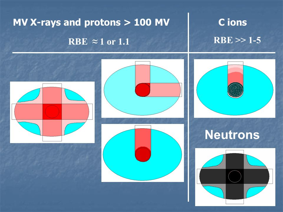 Neutrons MV X-rays and protons > 100 MV C ions RBE ≈ 1 or 1.1