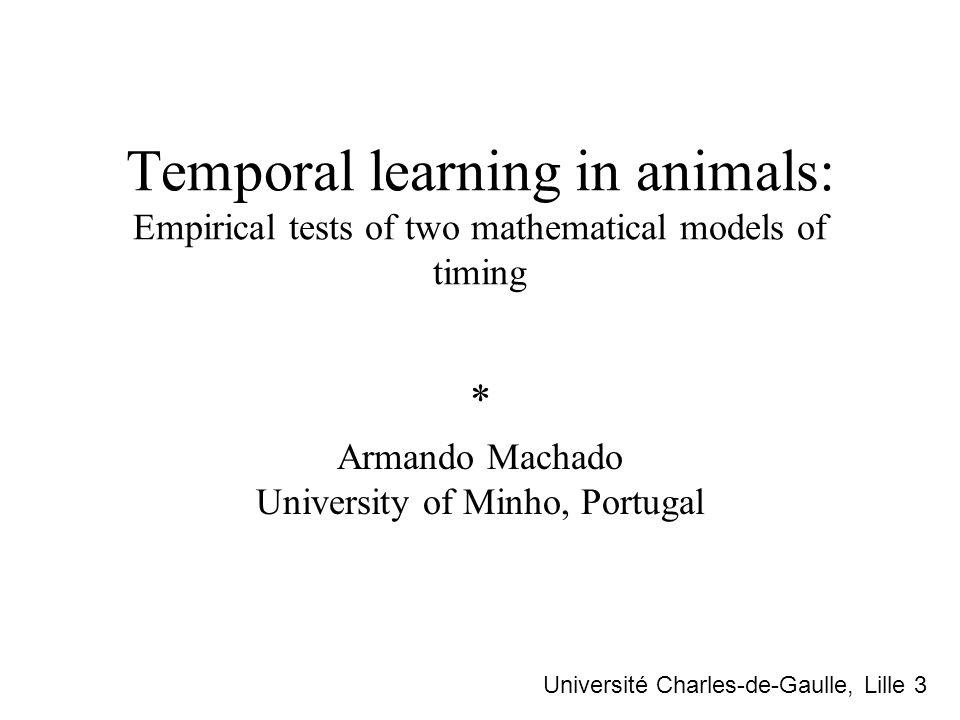 * Armando Machado University of Minho, Portugal