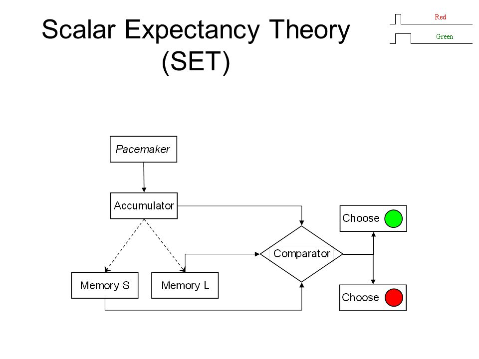 Scalar Expectancy Theory (SET)