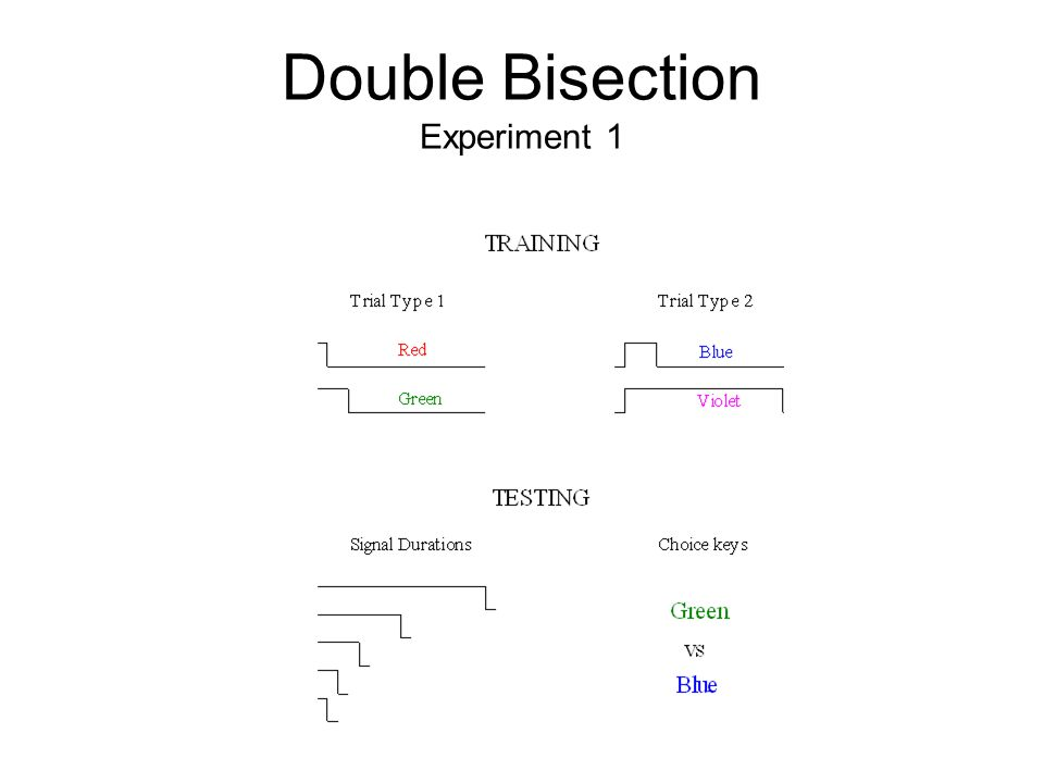 Double Bisection Experiment 1