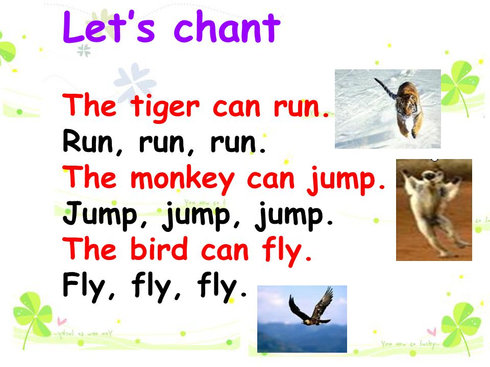 Let's chant The tiger can run. Run, run, run. The monkey can jump.