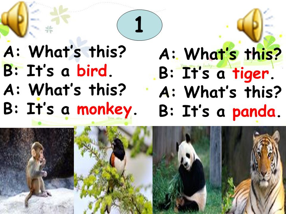 1 A: What's this A: What's this B: It's a bird. B: It's a tiger.