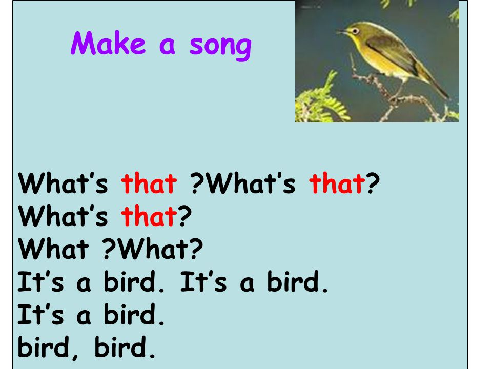 Make a song What's that What's that What's that What What