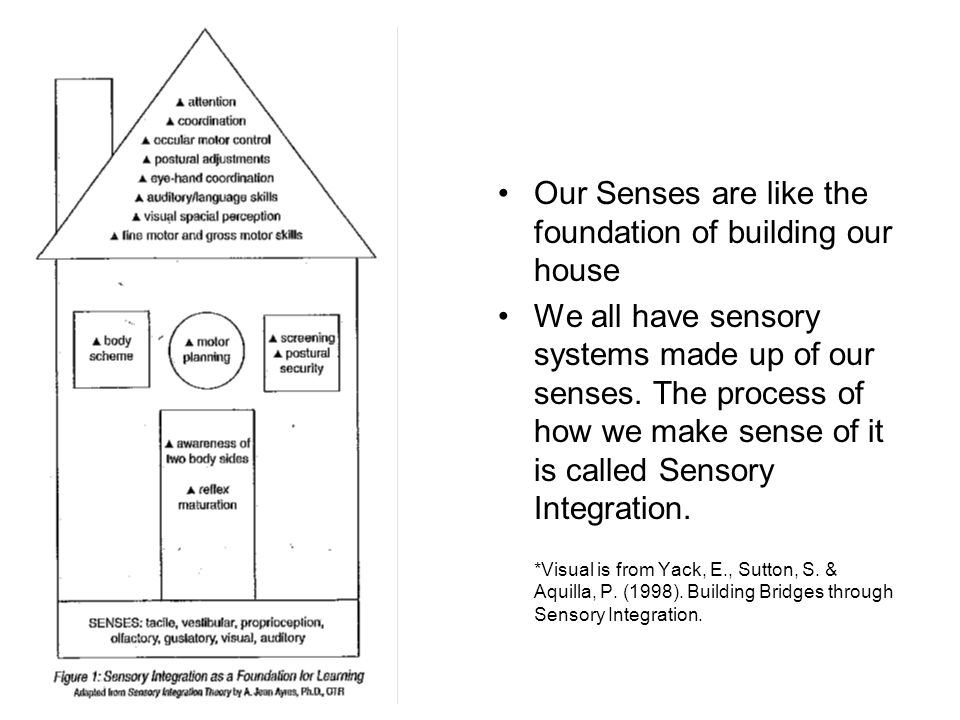Our Senses are like the foundation of building our house