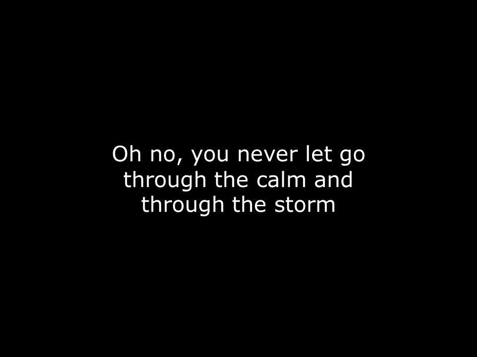 Oh no, you never let go through the calm and through the storm