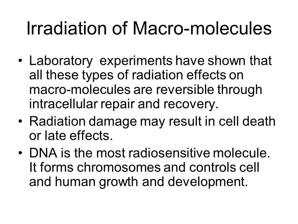 Irradiation of Macro-molecules