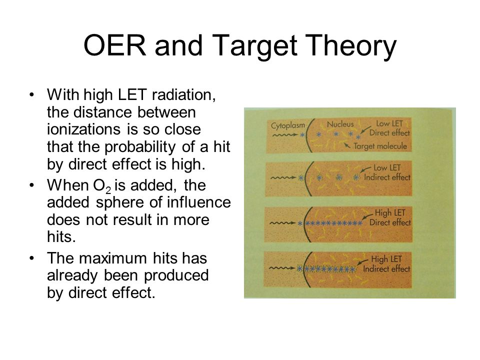 OER and Target Theory With high LET radiation, the distance between ionizations is so close that the probability of a hit by direct effect is high.
