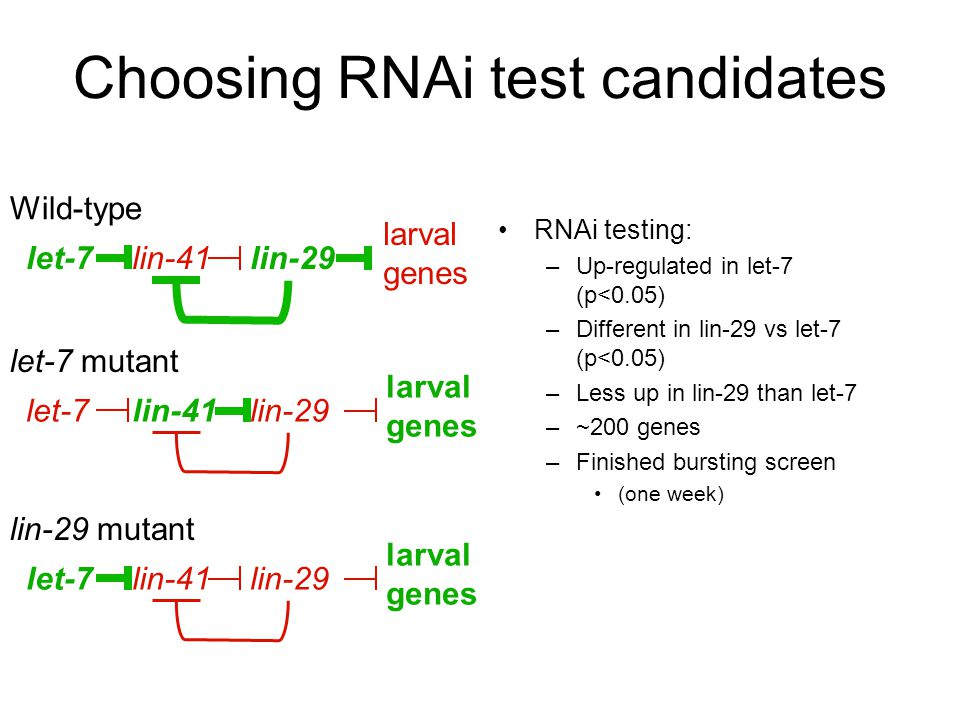 Choosing RNAi test candidates
