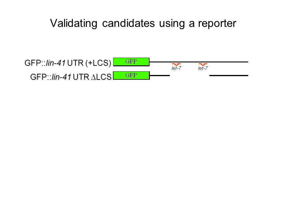 Validating candidates using a reporter