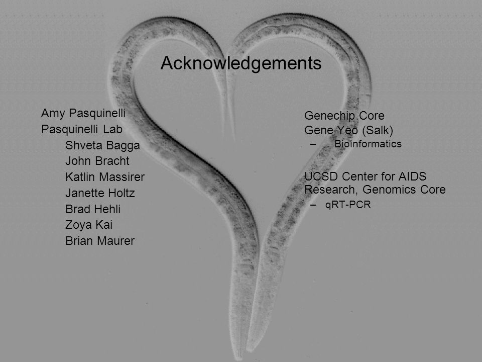 Acknowledgements Genechip Core. Gene Yeo (Salk) Bioinformatics. UCSD Center for AIDS Research, Genomics Core.