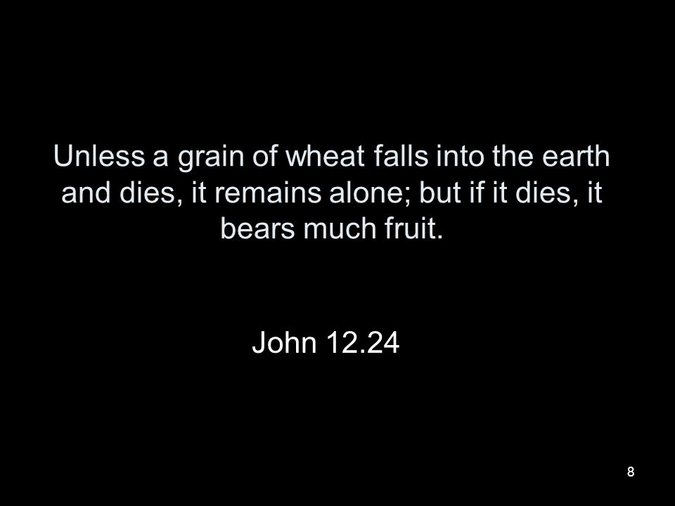 Unless a grain of wheat falls into the earth and dies, it remains alone; but if it dies, it bears much fruit.