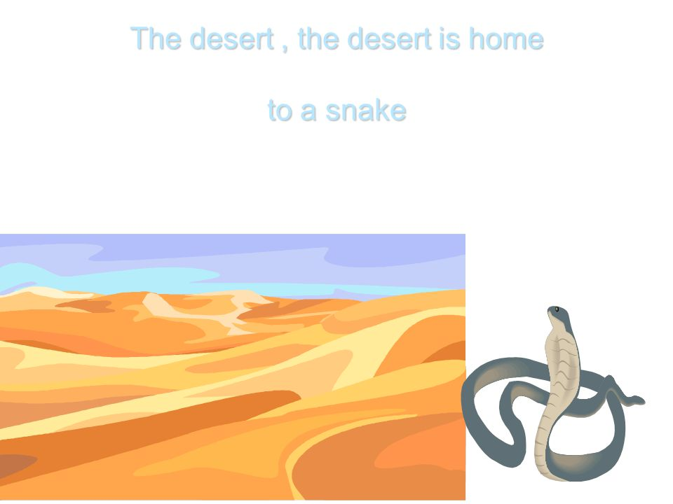 The desert , the desert is home to a snake