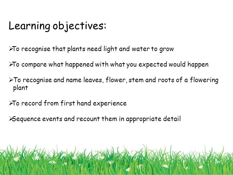 Learning objectives: To recognise that plants need light and water to grow. To compare what happened with what you expected would happen.
