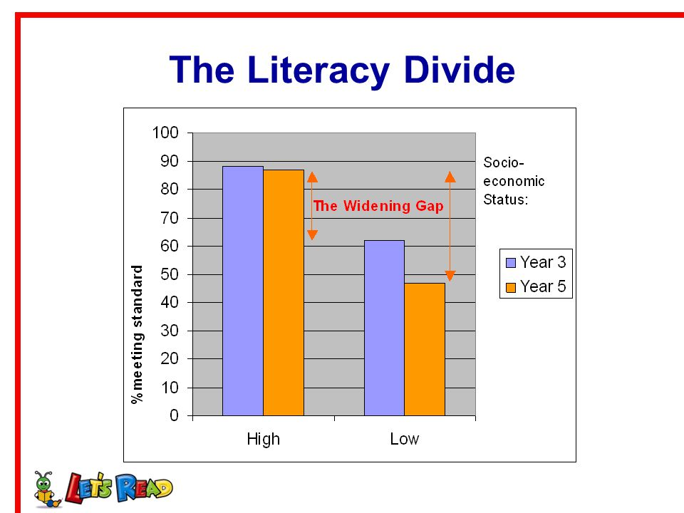 The Literacy Divide
