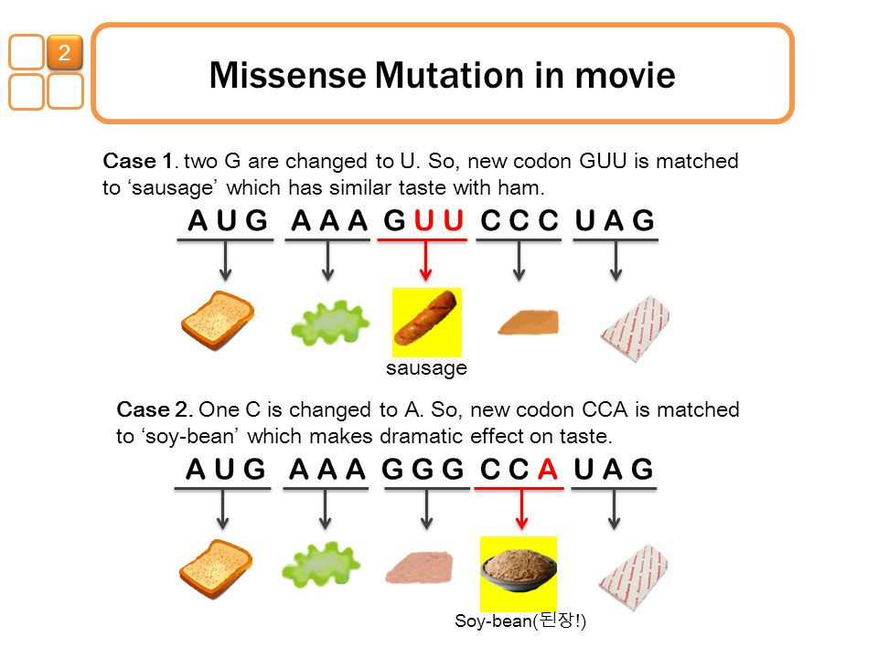 Missense Mutation in movie