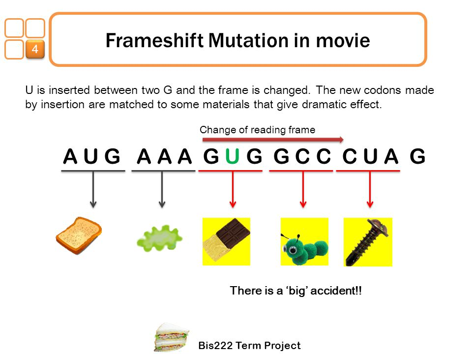 Frameshift Mutation in movie