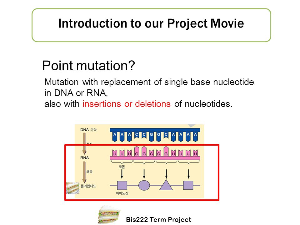 Understanding Mechanisms of Mutation