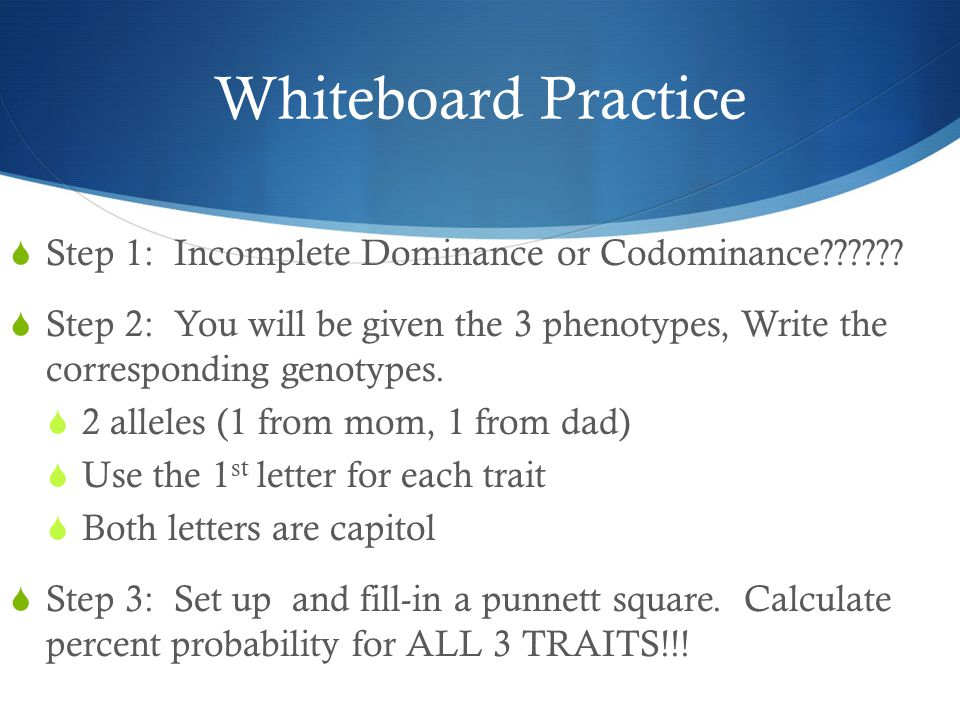 Whiteboard Practice Step 1: Incomplete Dominance or Codominance