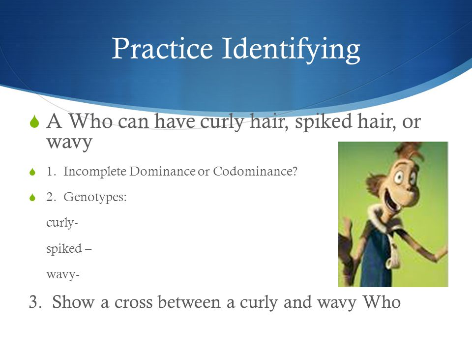 Practice Identifying A Who can have curly hair, spiked hair, or wavy