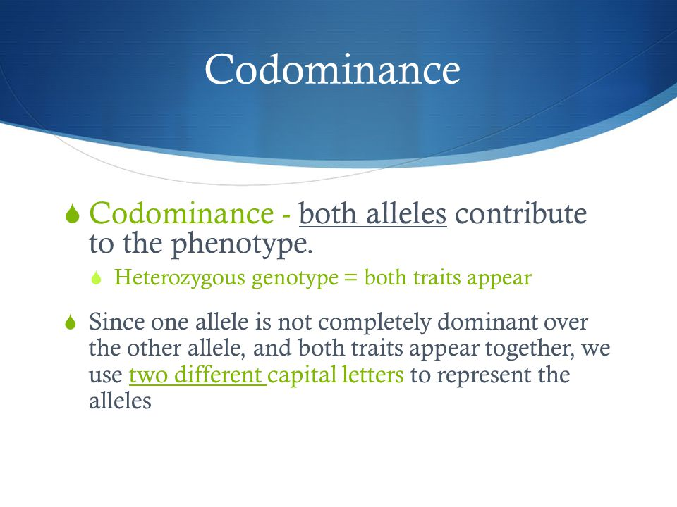 Codominance Codominance - both alleles contribute to the phenotype.