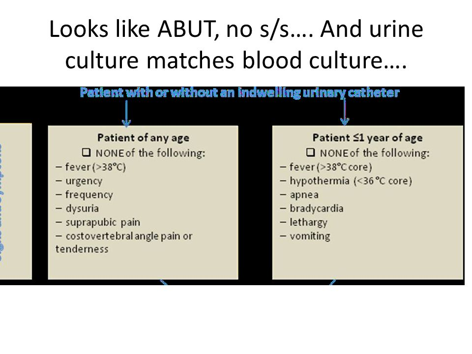 Looks like ABUT, no s/s…. And urine culture matches blood culture….