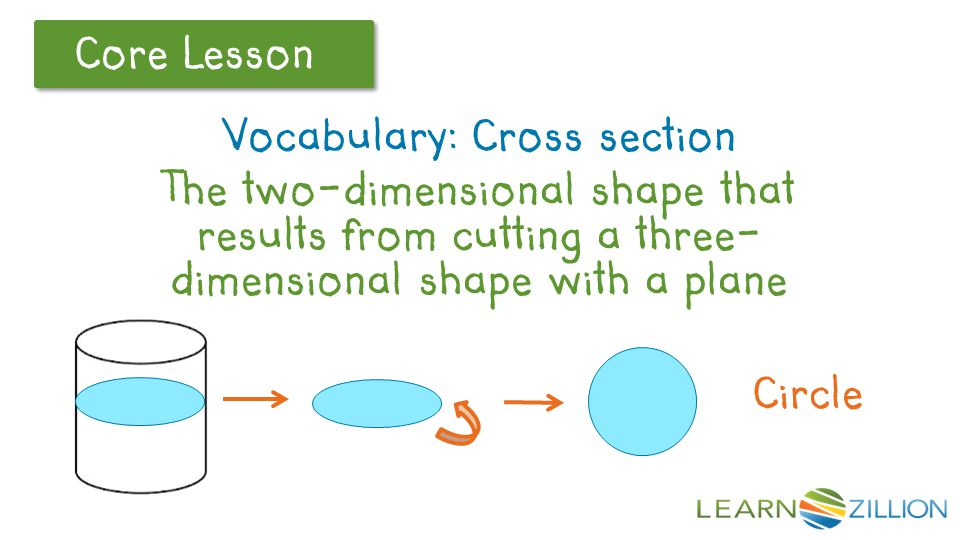 Vocabulary: Cross section