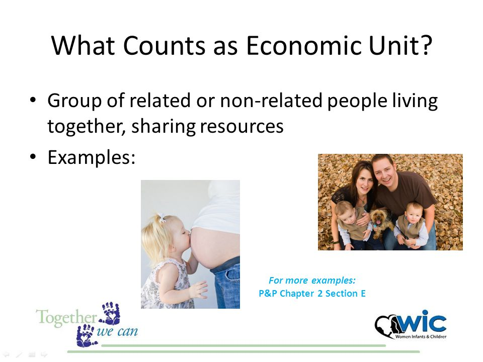What Counts as Economic Unit