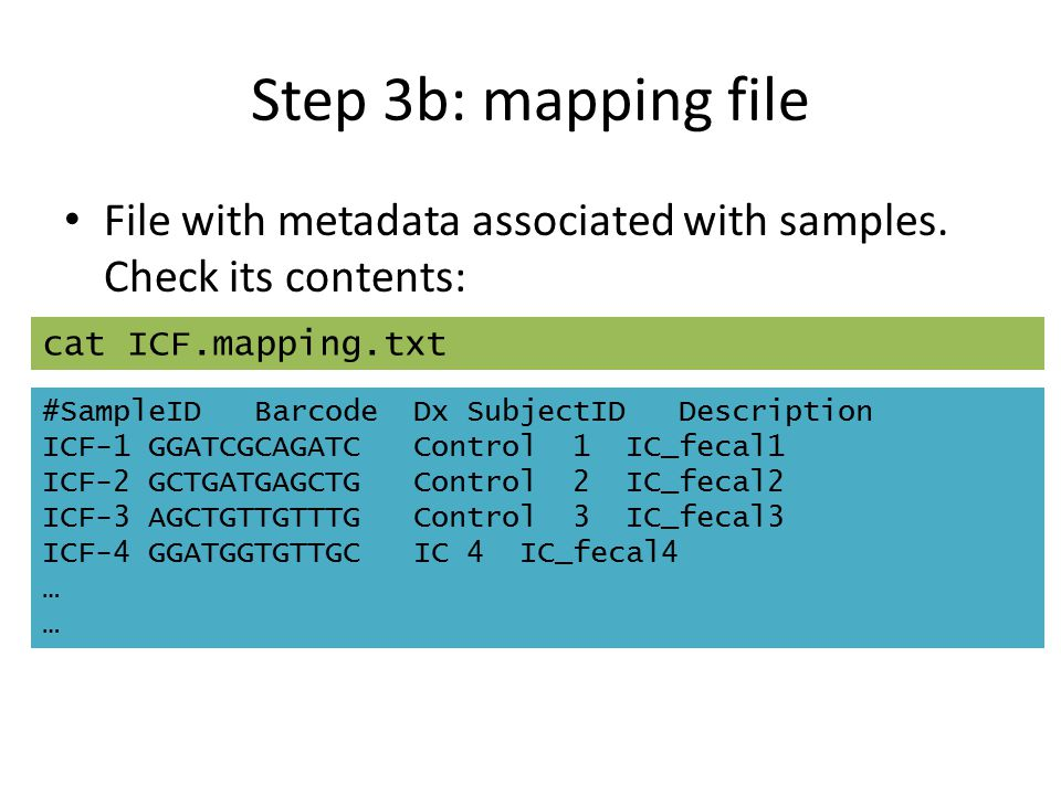 Step 3b: mapping file File with metadata associated with samples. Check its contents: cat ICF.mapping.txt.