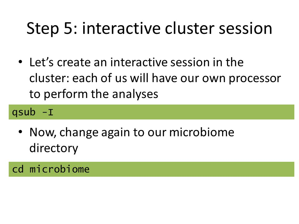Step 5: interactive cluster session