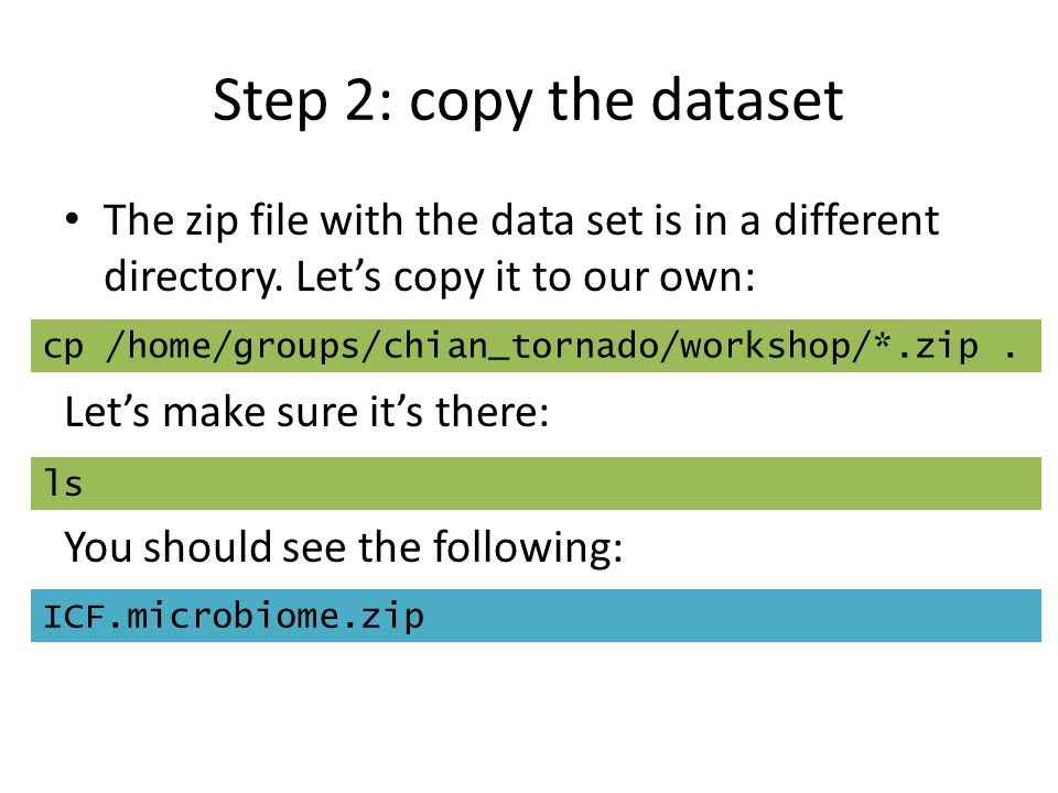 Step 2: copy the dataset The zip file with the data set is in a different directory. Let's copy it to our own: