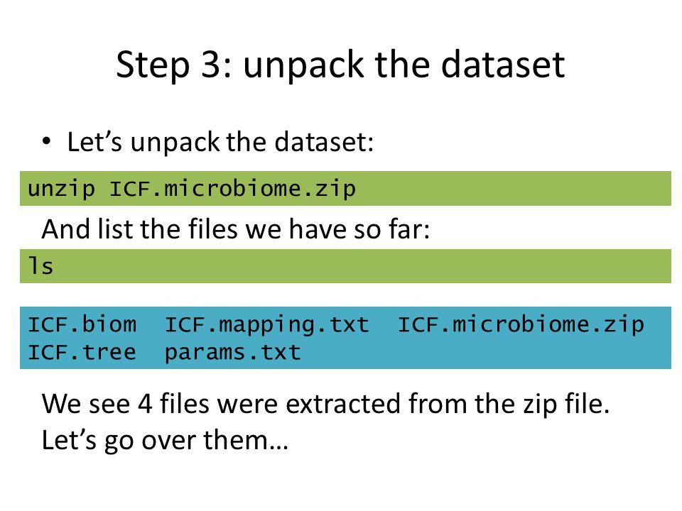 Step 3: unpack the dataset