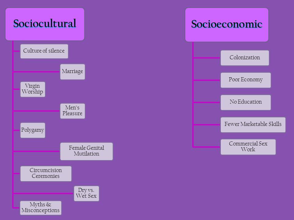 Sociocultural Socioeconomic