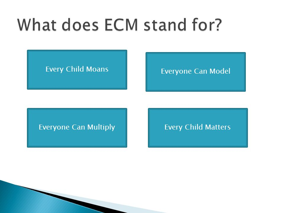 What does ECM stand for Every Child Moans Everyone Can Model