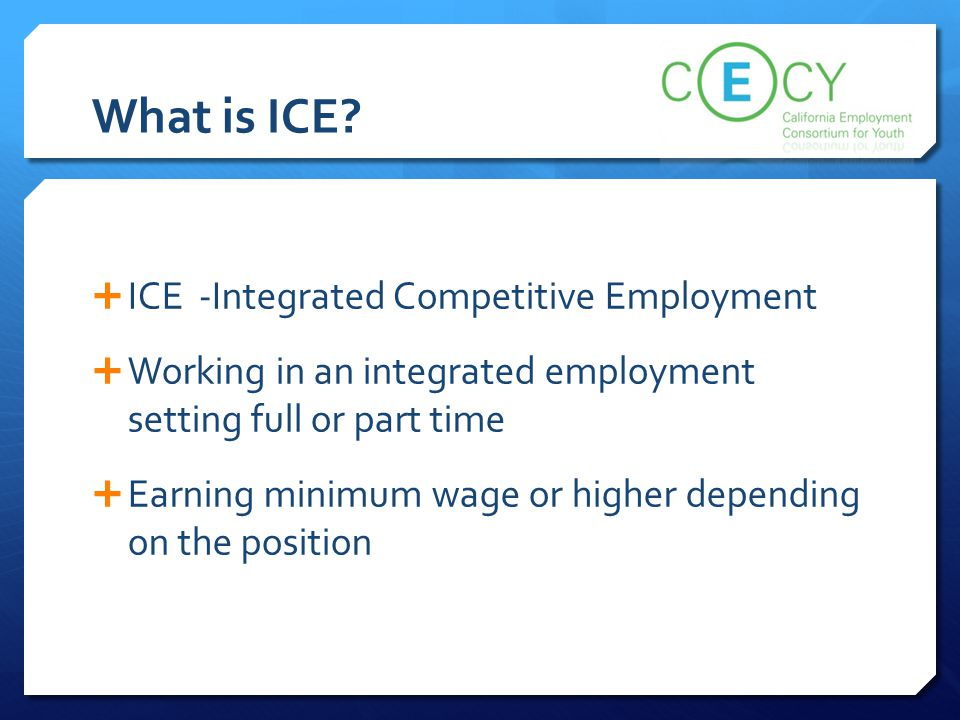What is ICE ICE -Integrated Competitive Employment