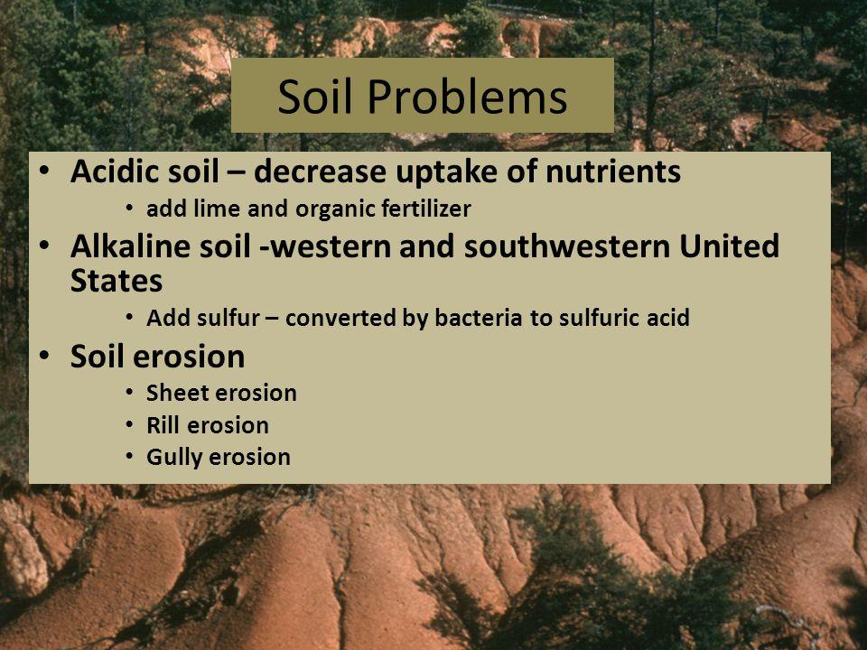 Soil Problems Acidic soil – decrease uptake of nutrients