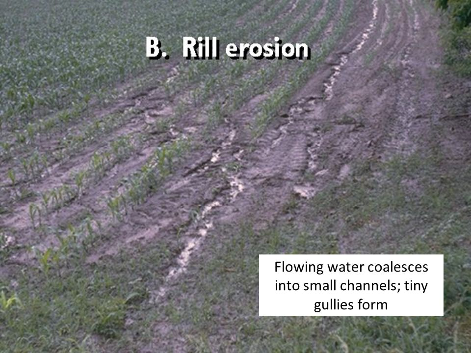 Flowing water coalesces into small channels; tiny gullies form