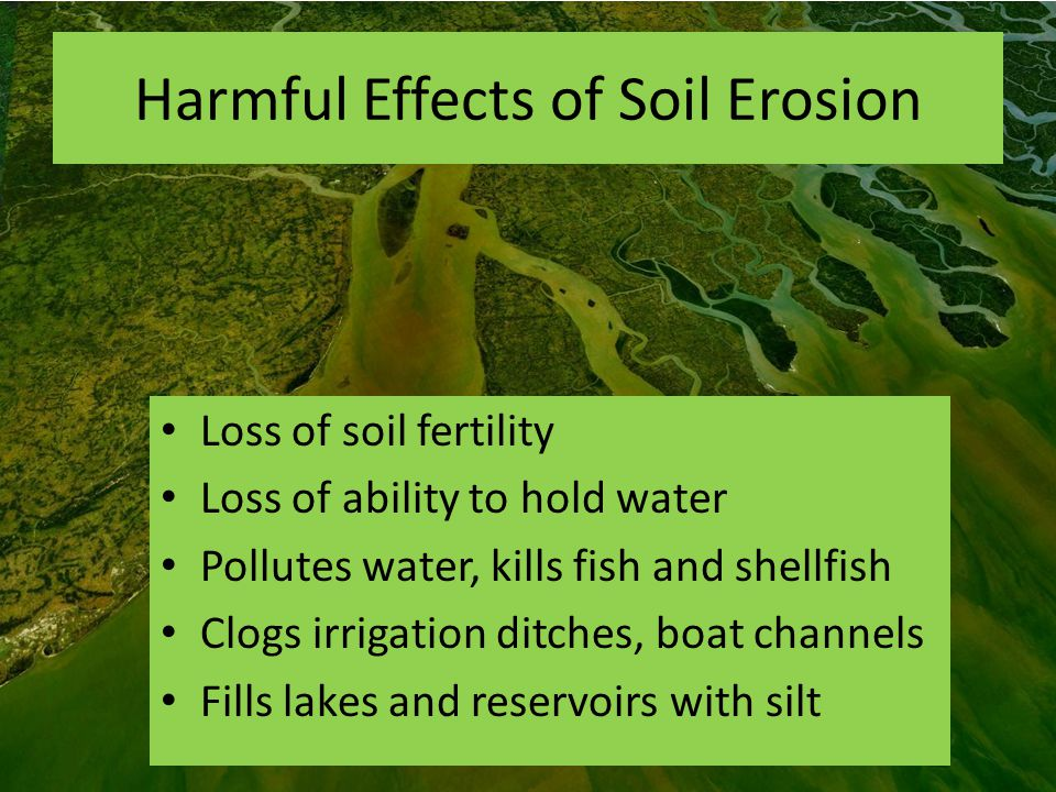 the significant effects of soil erosion on the environment Soil erosion negatively affects crop yields and the field rather than significant soil export effects of soil erosion on the environment should.