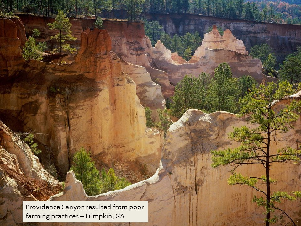Providence Canyon resulted from poor farming practices – Lumpkin, GA
