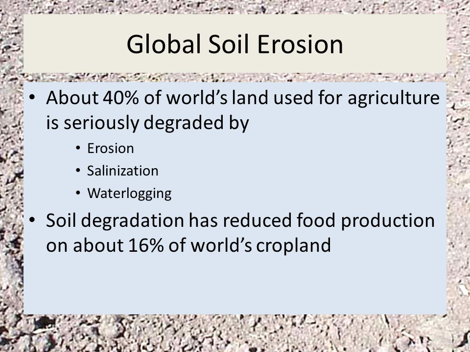 Global Soil Erosion About 40% of world's land used for agriculture is seriously degraded by. Erosion.